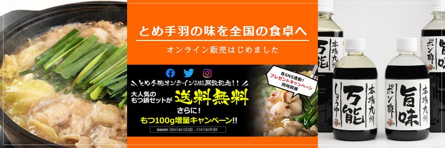 九州名物とめ手羽 オンラインショップ